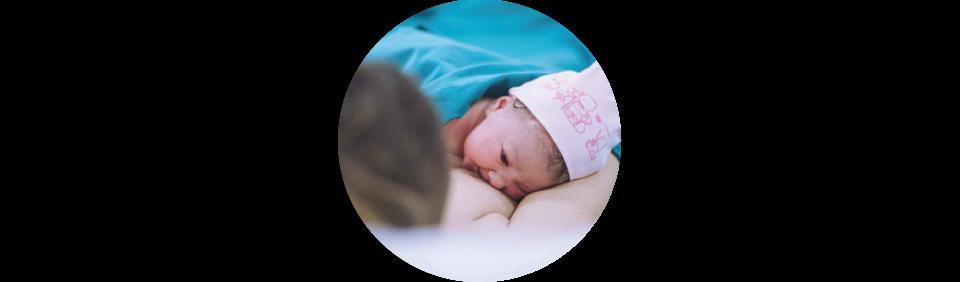 http://www.axxishospital.com.ec/wp-content/uploads/2021/01/apego-inmediato-1-960x282.png